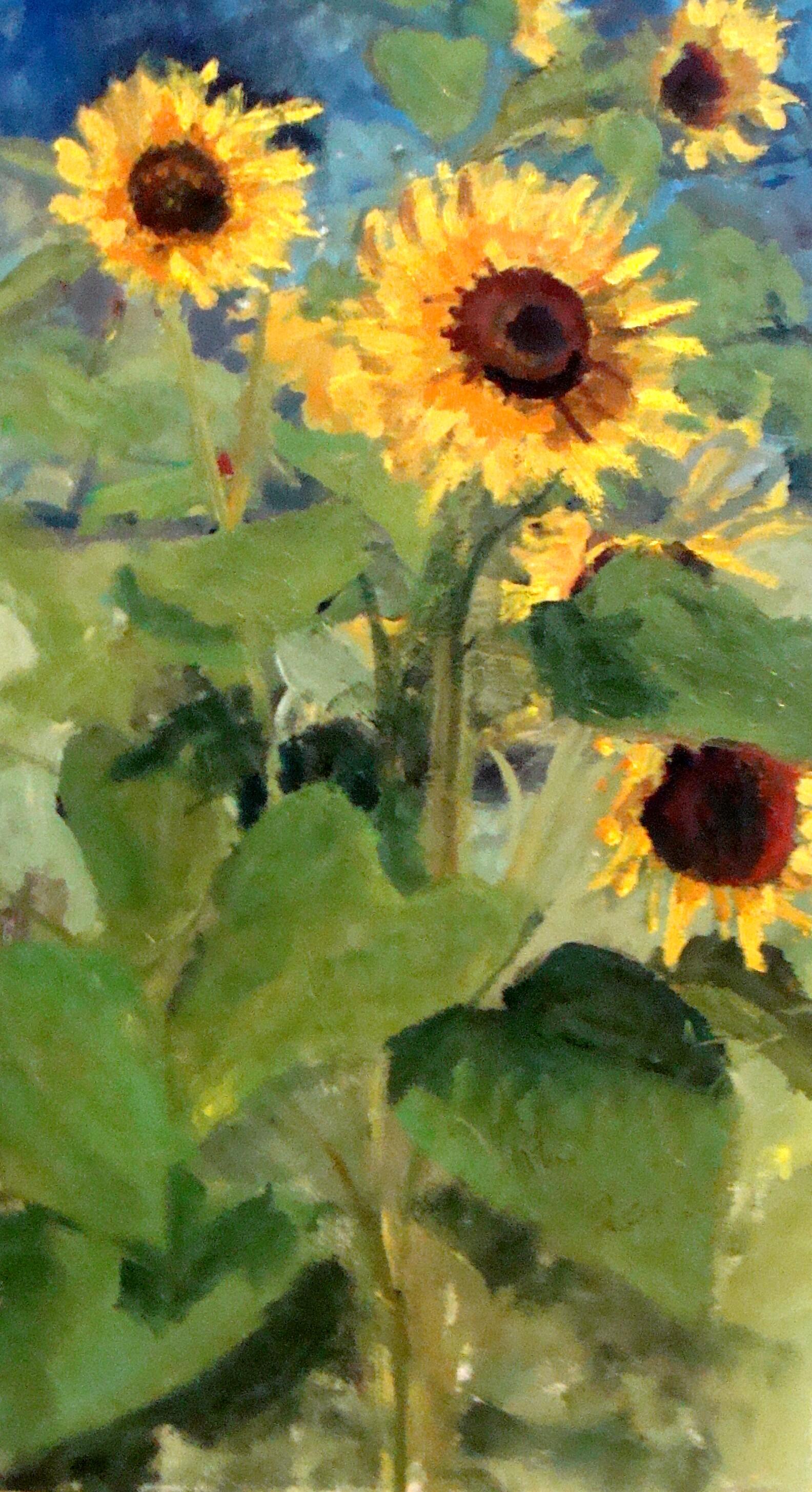 Sunflower Oil In Paint